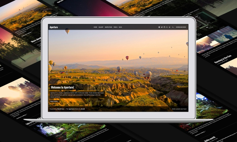 Screenshot of the Aperture theme for WordPress